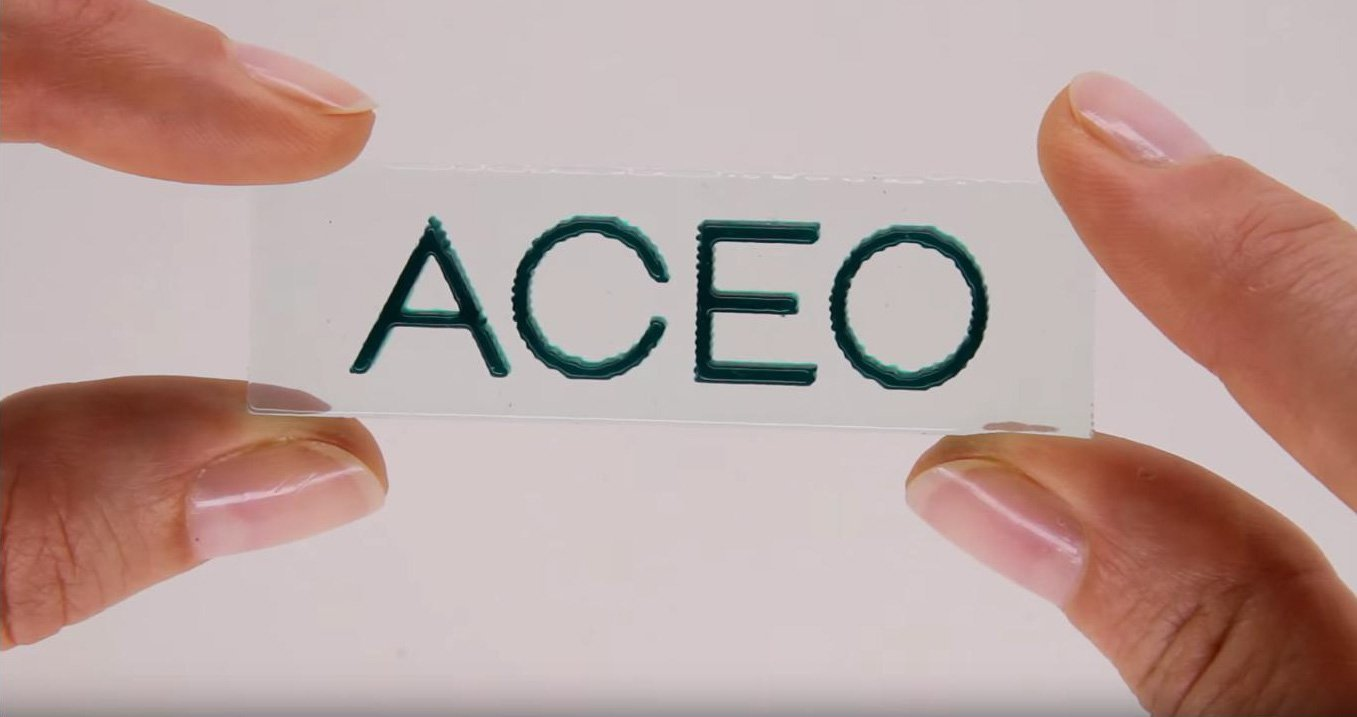Interview: Judith Distelrath of Wacker Chemie AG – ACEO®