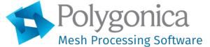 Polygonica_software logo